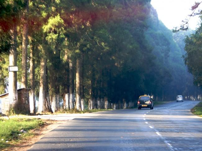 Shillong to Cherrapunjee